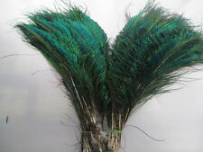 natural peacock feathers sword 12-14 inches left and right sides is symmetrical