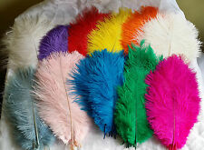 OSTRICH FEATHERS, PACK OF 10 (APPROX 8''-12' LONG) BEAUTIFUL COLOURS