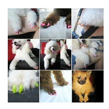 20 Pcs+ Glue Pets Paws Off Soft Anti Scratch Claw Control Nail Caps For Cat Dog