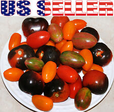 30+ ORGANIC Cherry Tomato Mix Seeds Heirloom NON-GMO Sweet Rich Black Red Rare