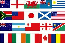 Rugby World Cup  2015 England Bunting Flags Flag  All 20 Countries