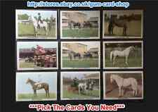 ☆ Anglo Confectionery - The Horse 1966 (G) ***Pick the Cards You Need***
