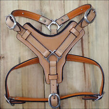 201 HILASON TAN PADDED GENUINE LEATHER DOG HARNESS WITH MATCHING LEASH ALL SIZES