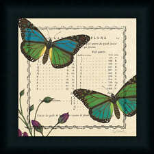 Summer Pages IV Sue Schlabach Vintage Butterfly Framed Art Print Décor Picture
