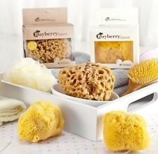 Natural-Kalymnos-Greek-Sea-Sponge-Honeycomb & Soft Silk-Bath-Body-Excellent-Good