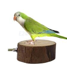 Round Wooden Pet Parrot Squirrel Bird Cage Perch Stand Fun Play Place S M L