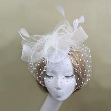 Wedding Bridal Bird Cage Mesh Face Veil Fascinator Feather Hair Clip Headpiece