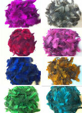 Free Shipping 2-4 inch / 5-10 cm perfect Pearl Feather Edge 100 pcs , 200pcs
