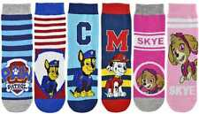 "Childrens Official Paw Patrol ""Marshall, Chase & Skye"" Character Socks 1pp Blue"