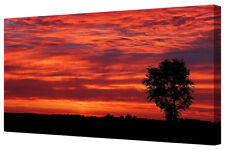 Vivid Red Sky Lonely Tree LARGE Framed Canvas Art Picture Print Sunset Sky Cloud