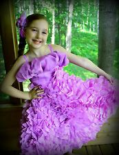 Embossed Flower Organza Dress Flower Girl Pageant Party Dress Kid SZ 3T-8 FG132
