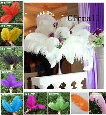 10pcs New Natural Ostrich Feathers 10 Colors Fit Stage Home Wedding Decoration