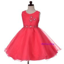 Rhinestone Pleats Party Wedding Flower Girl Pageant Dresses Up Size 2-12 FG348
