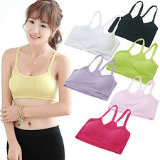 Women's Casual Sport Vest Yoga Bra Soft Y-Shape Strap Crop Top Underwear Rapture
