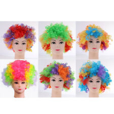 Afro Wig Circus Clown Hair Wig 70s 80s Fancy Dress Cosplay Party Costume Prop