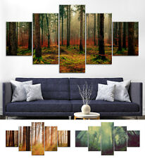 Wood Trees Forest Canvas Print Painting Framed Home Decor Wall Art Poster 5Pcs