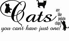 Cat Lady Lover a Quote Saying Wall Art Sticker Decal Pet Word Wording Pussy