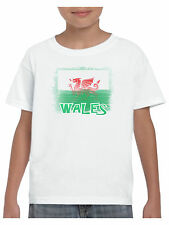 Wales T Shirt boys Girls Shabby Welsh Flag Wales Dragon Cymru Football Rugby