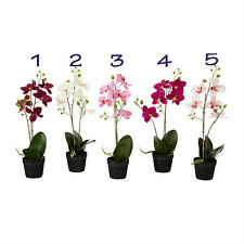 """IKEA artificial potted plant ORCHID flower 18"""" lifelike nature pot herb Fejka"""