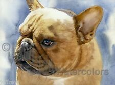 FAWN FRENCHIE French Bulldog Dog Art Print Watercolor Painting Artist Signed