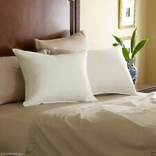 Pacific Coast® Eurofeather® Pillow Standard Queen King Hotel Quality