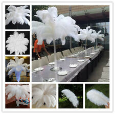 Wholesale 20/50/100pcs High Quality 6-24 inch/15-60cm Natural OSTRICH FEATHERS