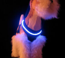 LED Dog Harness for small dogs - XS