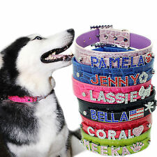 Personalized Croc pink red blk blue green Pet Cat Dog Collar free letters charm