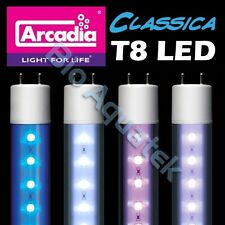 NEW Arcadia Classica T8 LED Lamp Tube - Convert Fluorescent T8 to LED In Seconds