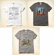 Mens Hollister Star Wars T-Shirt Muscle Fit White Gray Tee R2-D2 C3-PO S M L XL