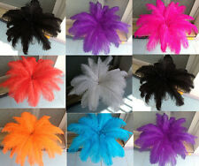 Wholesale 100pcs ostrich feathers decor wedding&Home,6-8inches choose color
