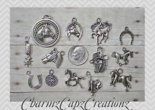 13 pc Horses Silver Charm Set Lot Collection / Horse Country Western / Set #1