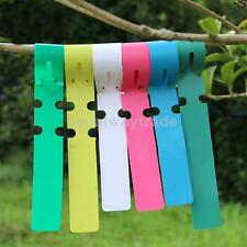 100pcs PVC Greenhouse Gardening Plant Stake Hanging Collar Identity Tag Label