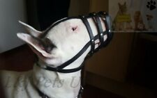 Light Leather Dog Muzzle for English Bull Terrier and other similar snout