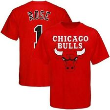 Derrick Rose #1 Chicago Bulls NBA Player T Shirt Brite Red Toddler Sizes