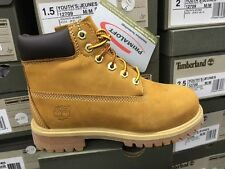 Timberland Youth 6-Inch Premium Waterproof Winter Boots Wheat 12709 Sz:12.5C-3Y