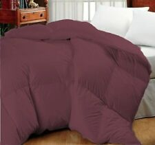 Wine Oversized Goose Down Alternative Year Round Comforter QUEEN and KING
