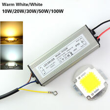 10W-100W Warm/Cool White LED Chip Bulb Light Waterproof LED Driver Power Supply