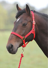 Shires Wessex Headcollar And Lead Rope Set - RRP £9.99 - SAVE 20%