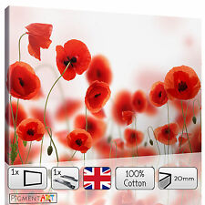 RED FLOWERS POPPIES POPPY FLORAL FIELD CANVAS WALL ART FRAMED PRINTS PICTURES