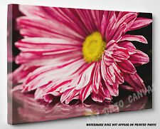 X LARGE CANVAS STUNNING Pink Chrysanthemum Flower with Leaves Photo Wall Art