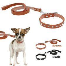 Studded Leather Dog Collar and Leash Set for Small Dogs Puppy Yorkie Chihuahua