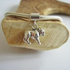 Bulldog Large Sterling Silver European-Style Charm and Bracelet- Free Shipping