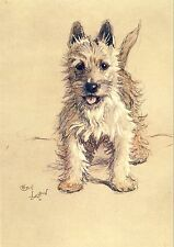 Cecil Aldin A Dozen Dogs or So Number 1 of 13 Vintage Print on Gloss Photo Paper