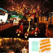 3.0m Battery Operated Fairy String Light LED Pumpkin Christmas Patio Home X2B9