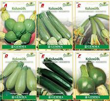20-35 Squash  Marrow Cucurbita Seeds 6 Special Varieties  BEST QUALITY NON-GMO