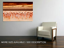 Canvas Print Picture Pink Flamingos Africa / Stretched ready to hang