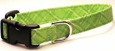 Bright Lime Plaid (#197) - Cat Collars, Chihuahua, Bichon Frise, Pug, Basenji