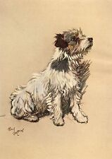 Cecil Aldin A Dozen Dogs or So Number 11 of 13 Vintage Print Gloss Photo Paper