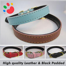 Double Sided PU Leather Dog collar Pet Cat Puppy | Tan Black Pink Red Blue| UK